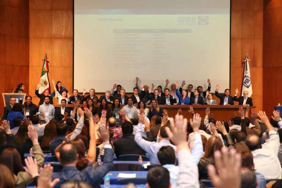 Aprueban por unanimidad a integrantes de la Comisión Organizadora Nacional de la elección del CEN