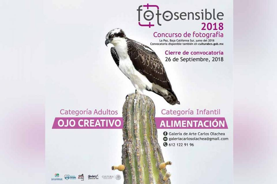 "Abre Instituto de Cultura La Convocatoria ""Fotosensible 2018"""