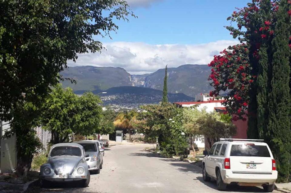 Universitarios desarrollan parque ecológico Yashalum en Tuxtla Gutiérrez