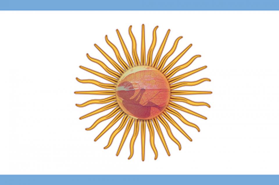 Postergan nuevo debate sobre aborto en Argentina