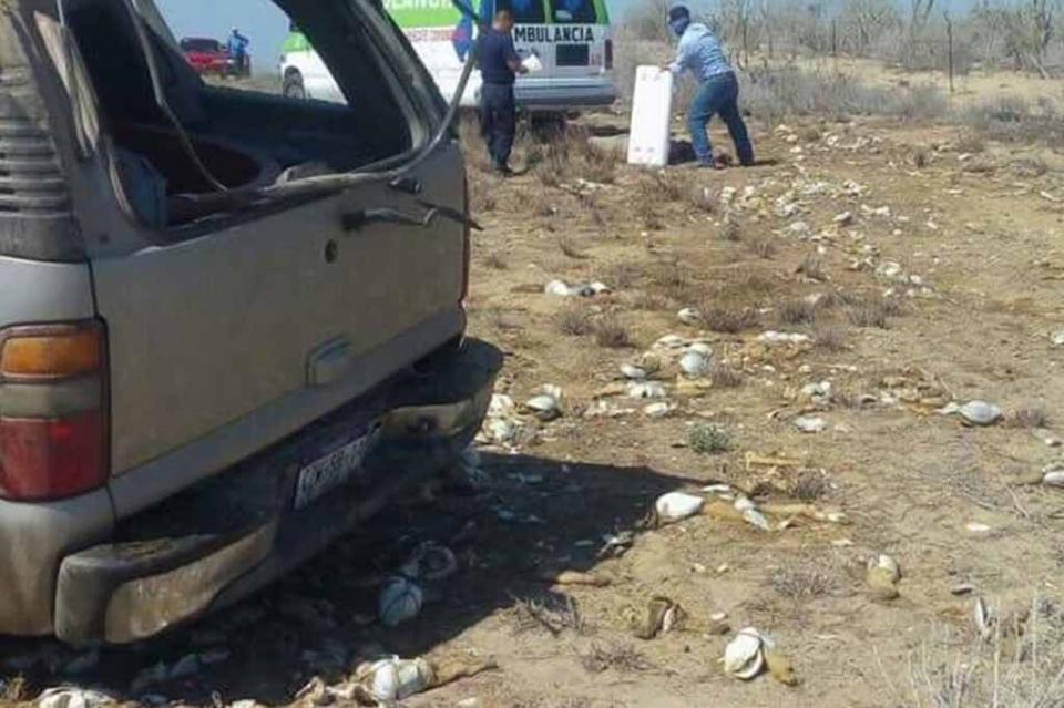 Vuelca camioneta que transportaba almeja generosa en Cd. Constitución