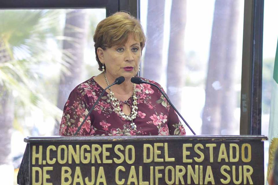 Realiza la Diputada Rosa Delia Cota un balance de tres años de Legislatura