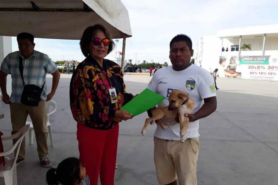 """""""Adopta un Amigo"""" Programa exitoso que promueve la adopción de animales de compañía"""