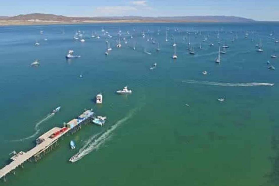 """Un éxito regata de veleros """"Baja Ha-Ha 2018"""""""