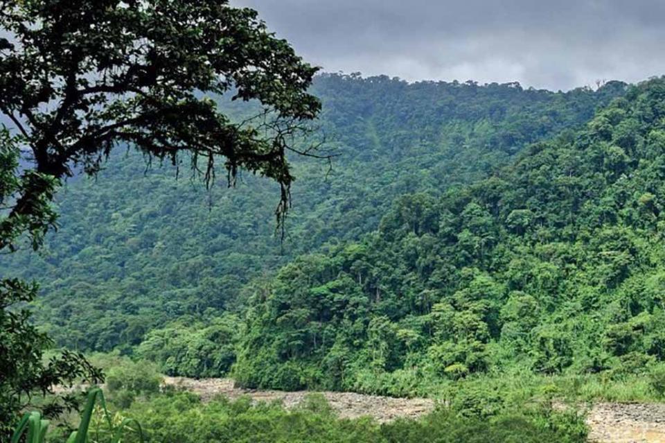 Gobierno federal incrementa en 163 mil hectáreas las áreas de conservación