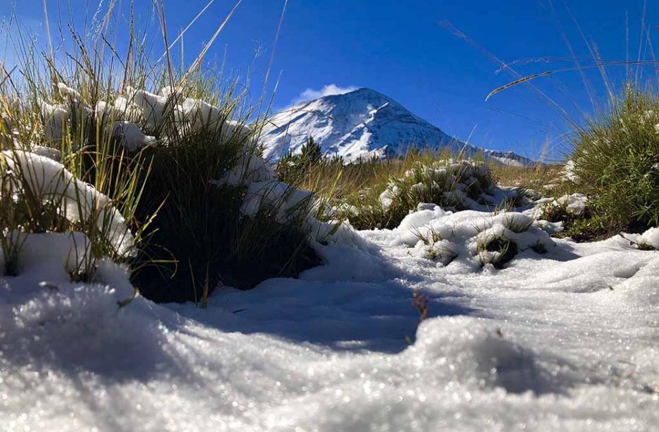 Inician operativos en áreas naturales protegidas por primeras nevadas
