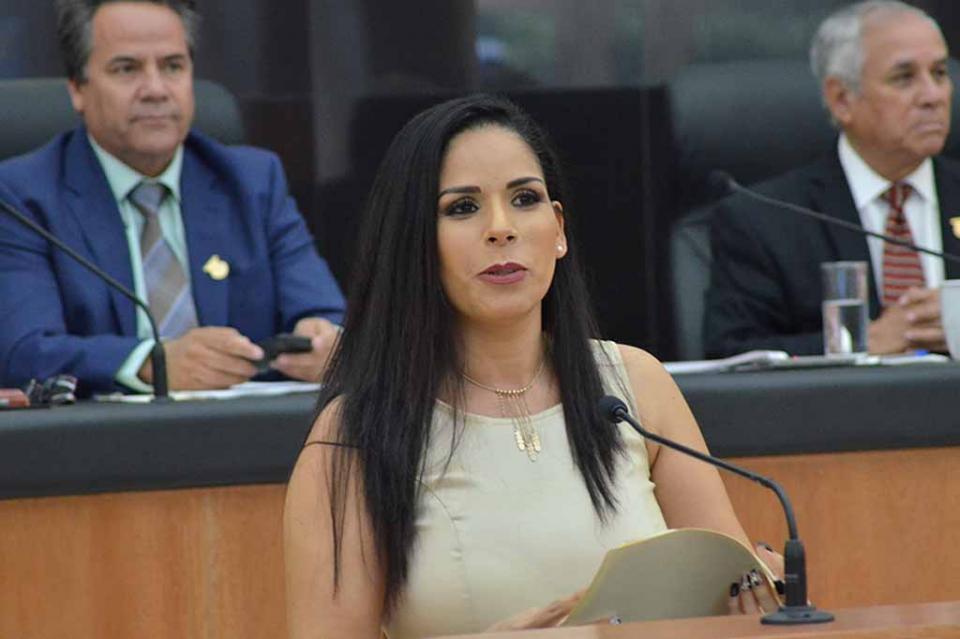 Solicita Fracción del Partido Encuentro Social en el Congreso del Estado apoyar la economía familiar