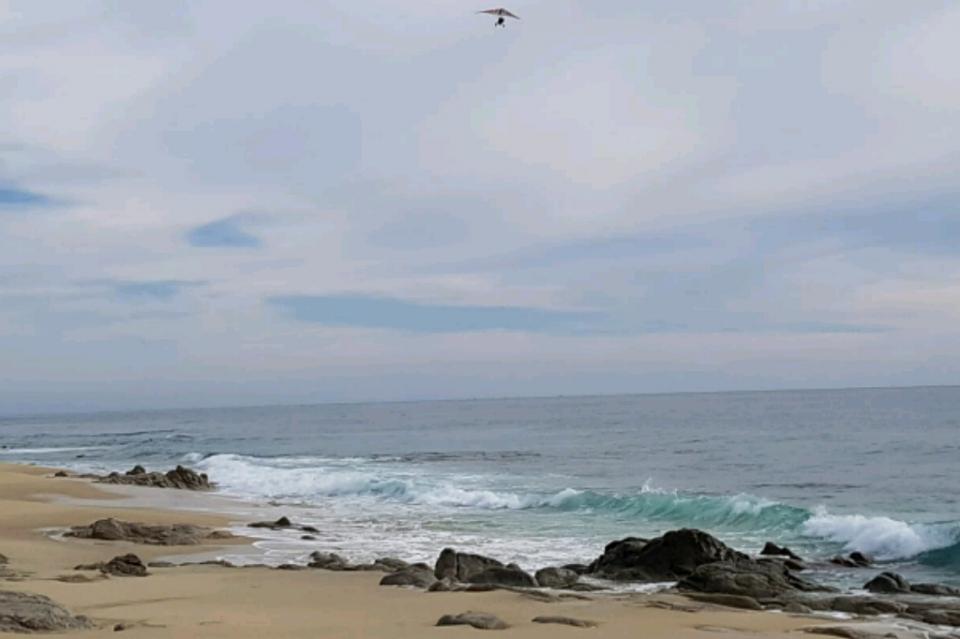 Encuentran sin vida cuerpos de 2 buzos en el área de Punta Gorda SJC