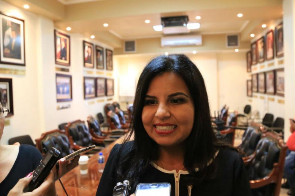 Vamos por un alto a los despilfarros y garantizar la eficiencia en las áreas: Amida Castro