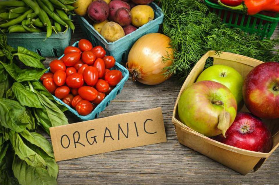 México, cuarto lugar a nivel global en producción de alimentos orgánicos