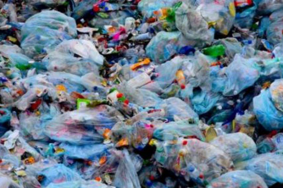 Europa le dice adiós al plástico desechable