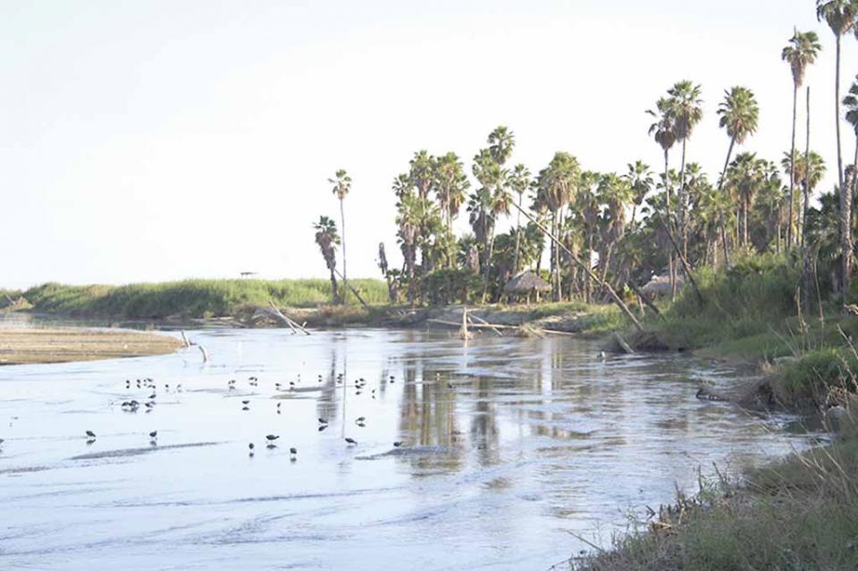 Debe ser prioridad de Gobierno municipal atender el Estero: SOS