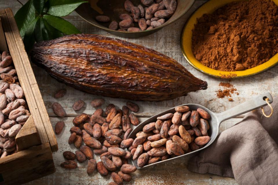"""Afirman que el cacao tiene más de 350 propiedades y ayuda a """"ser feliz"""""""