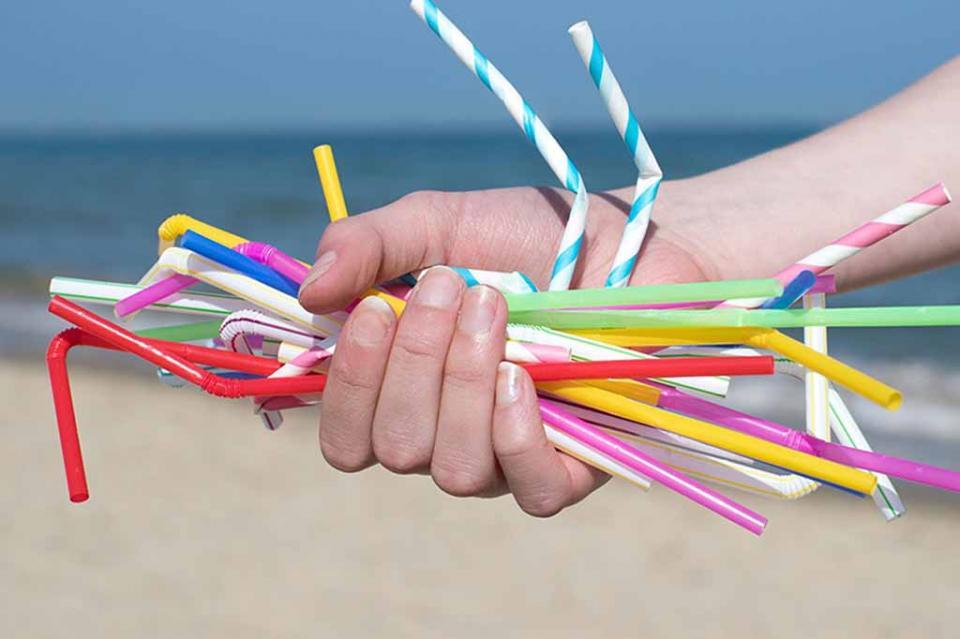 A partir de agosto de este año la Reforma a la Ley Ambiental prohíbe el uso de popotes, bolsas de plástico y contenedores de unicel para todo el estado