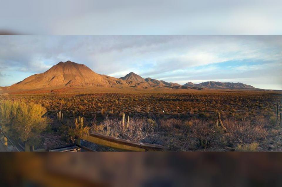 La Reserva de El Vizcaíno podría sufrir efectos con cambio climático