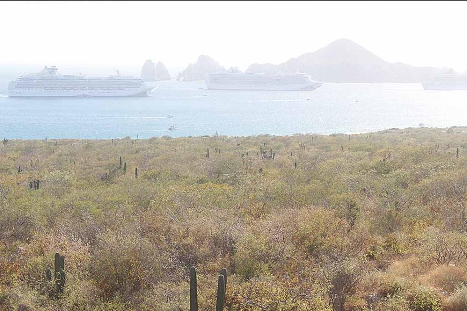 Registra Los Cabos arribo de 3 cruceros; más de 8 mil turistas en la bahía