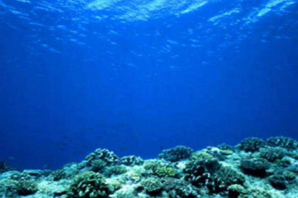 NASA reproduce orígenes de la vida en el fondo del océano