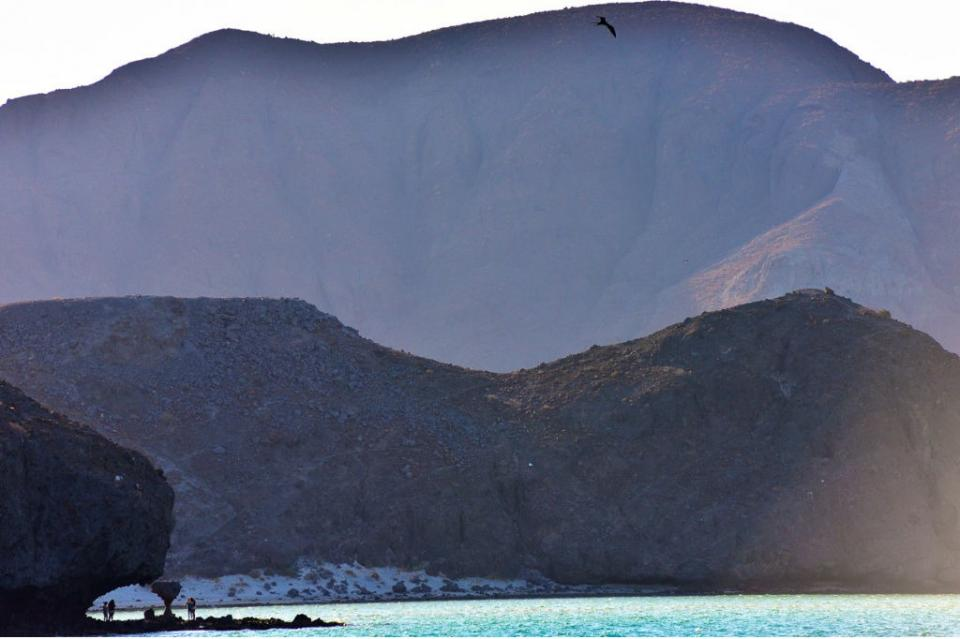 Playa Balandra nuevamente es considerada una de las Playas más populares de México por TripAdvisor
