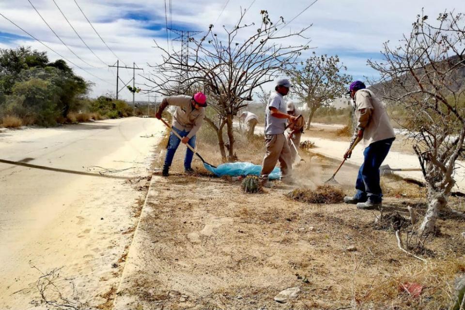 Servicios Públicos Los Cabos realiza limpieza de camellones centrales de las colonias en Puerto Nuevo y Vista Hermosa