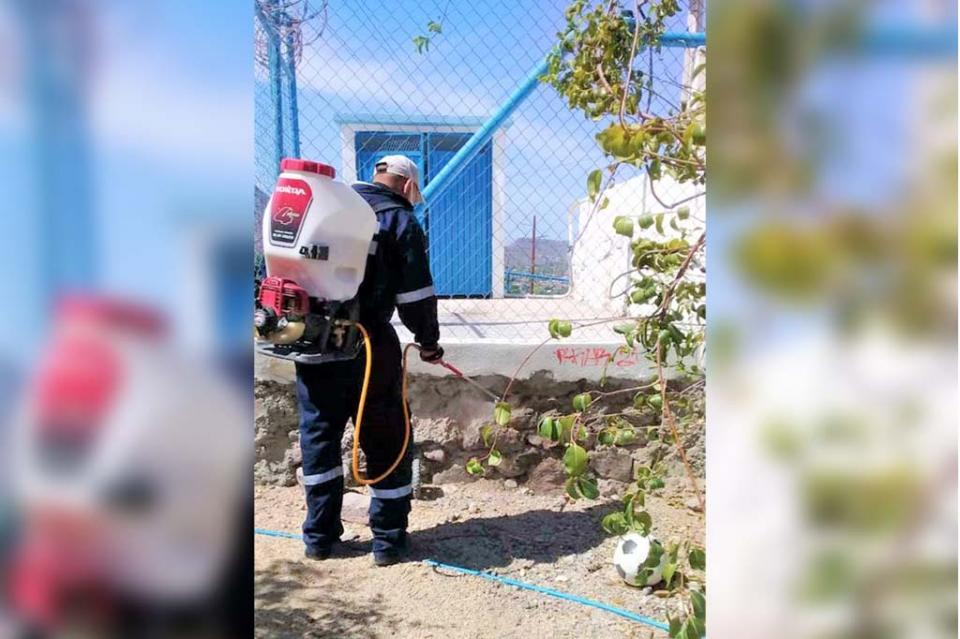 Se realizan brigadas de control larvario para eliminar criaderos de mosco