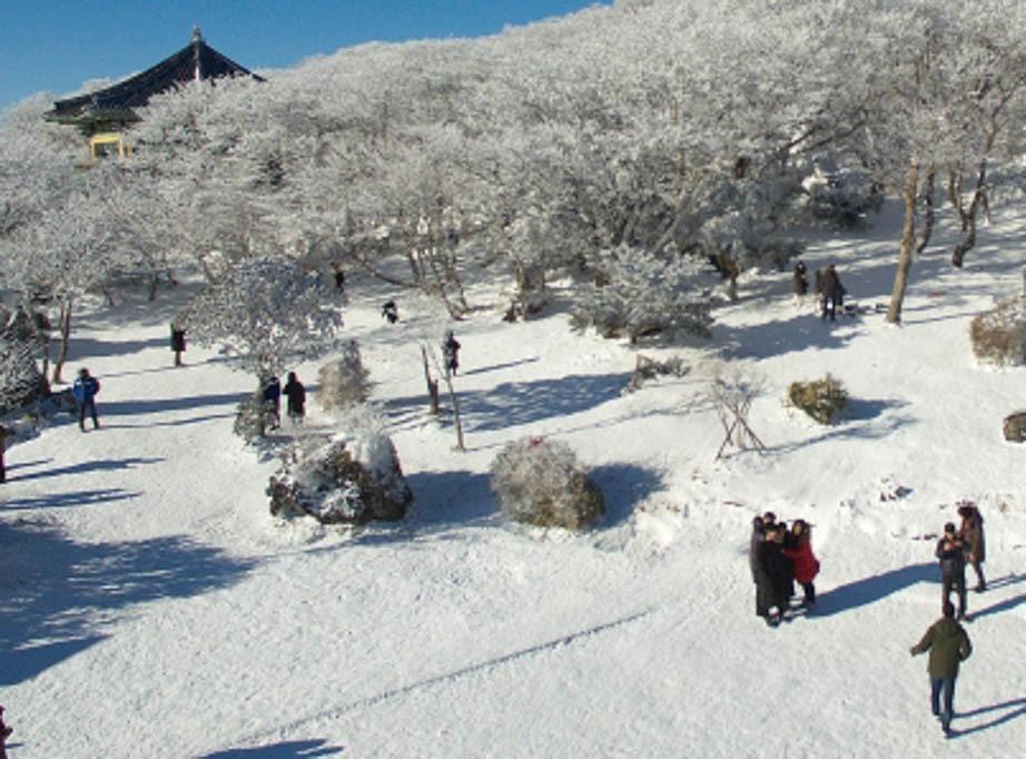 Elaboran dispositivo capaz de crear electricidad a partir de nieve
