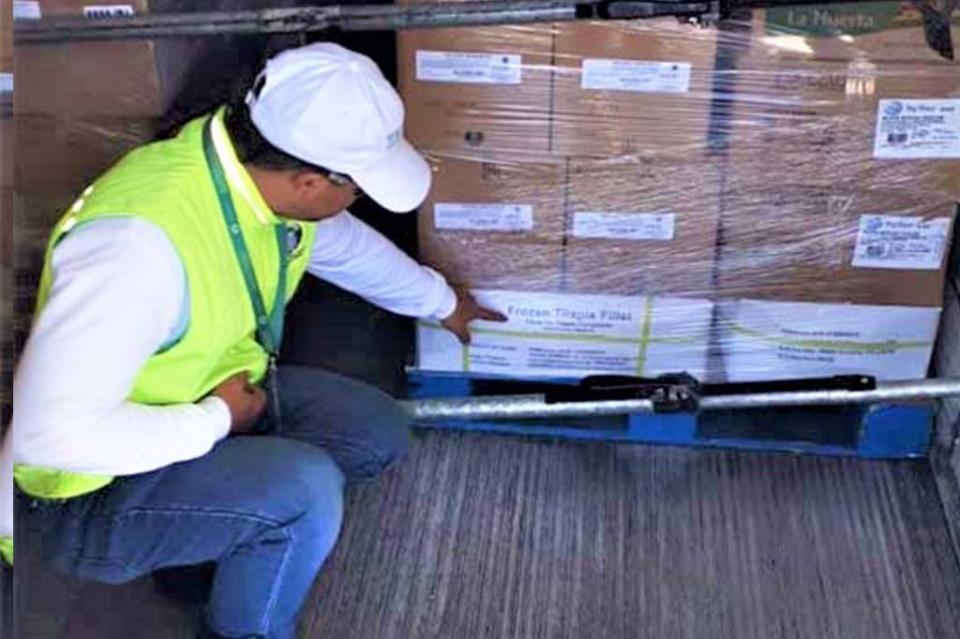 Refuerza COEPRIS el control sanitario de alimentos que ingresan por vía marítima