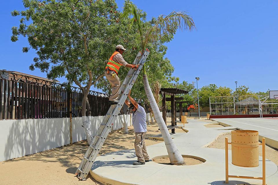 Servicios Públicos continúa con la mejora y rehabilitación de parques en Los Cabos