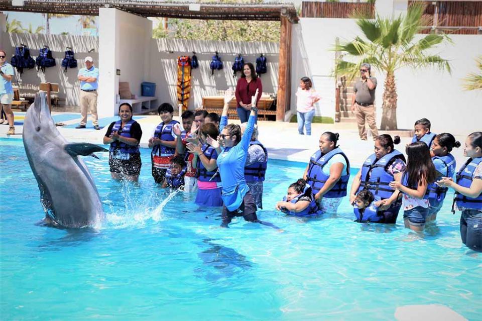 Con Delfinoterapias DIF y Cabo Dolphins benefician a niños con discapacidad