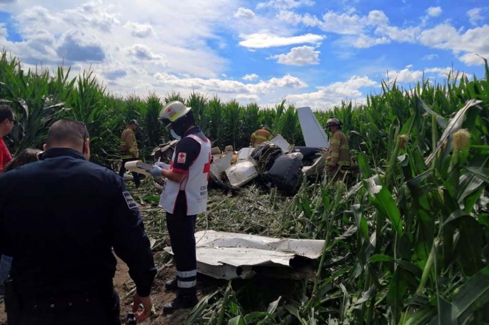 Mueren 4 en desplome de avioneta en Chihuahua