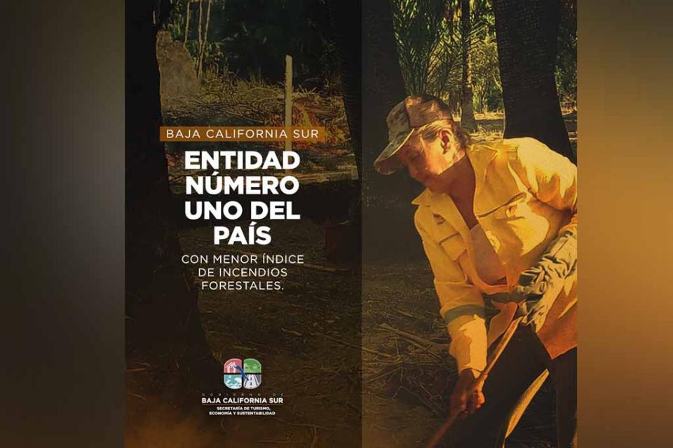 BCS comprometido con la protección de sus zonas forestales