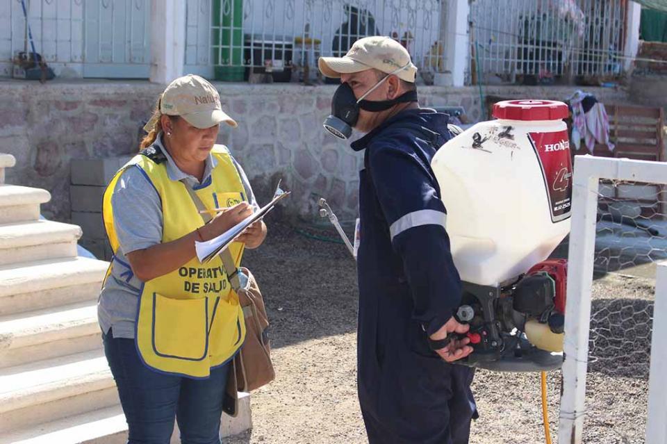 Brigadas de control larvario atienden colonias de La Paz