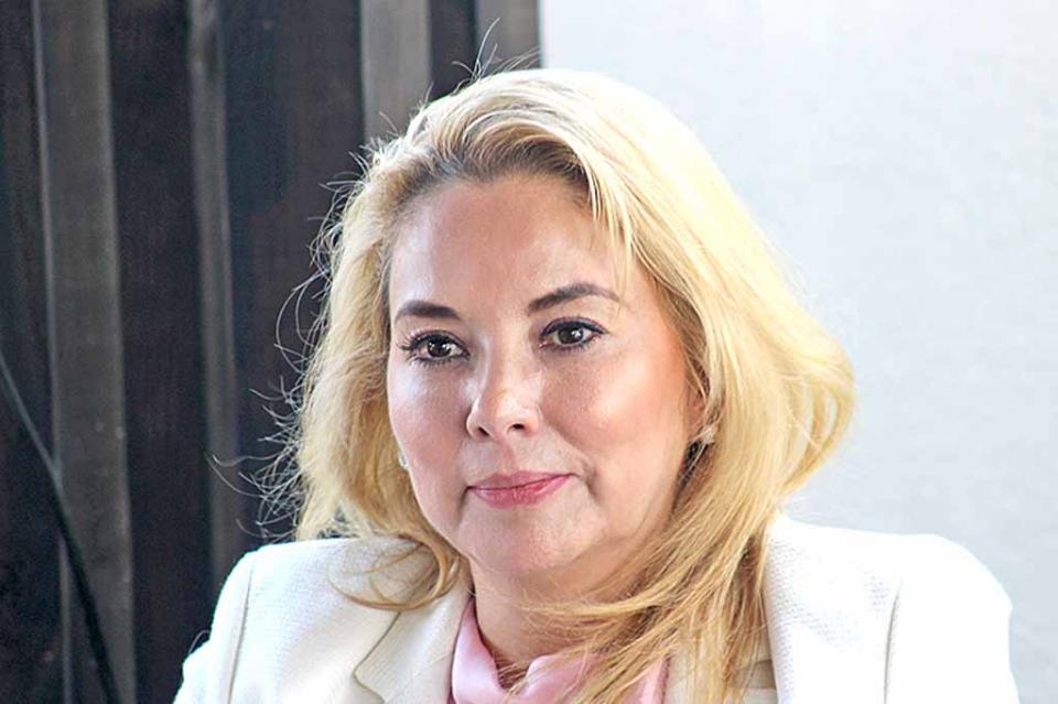"""""""Deben establecerse medidas inmediatas para atender el déficit en el servicio de energía eléctrica"""" Yolanda Razo"""