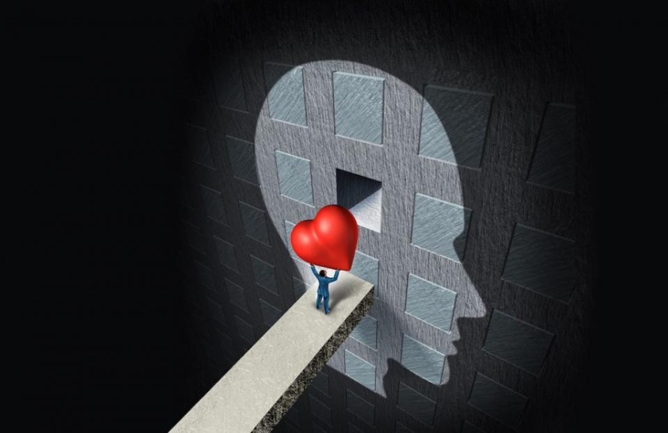 Mind or Heart, which one dominates emotional intelligence? By Gutemberg Dos Santos