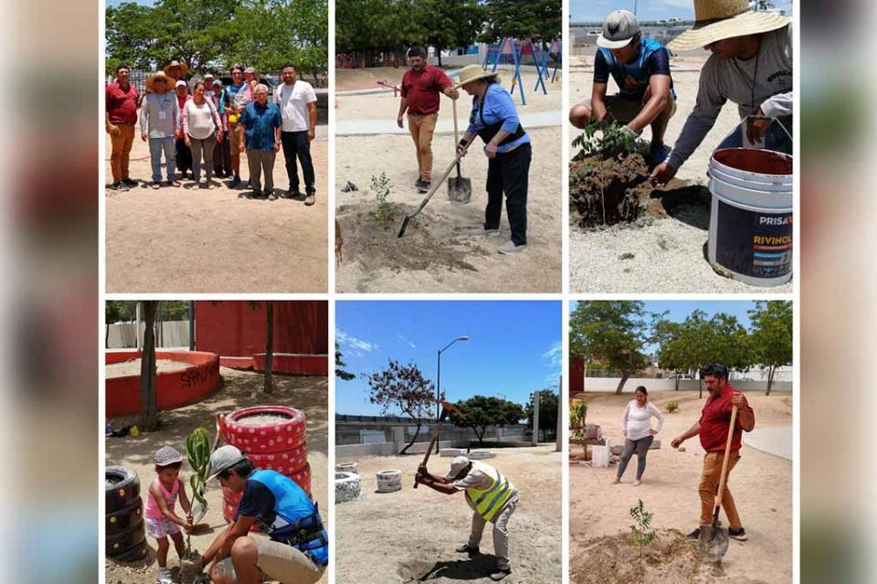 Nuevo Proyecto de Reforestaciones inicia el Gobierno Municipal