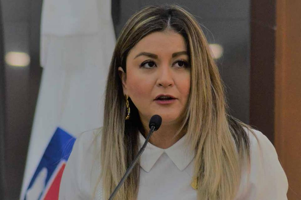 Presenta Dip. Daniela Rubio iniciativa de Ley de Videovigilancia para BCS