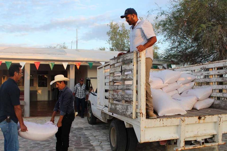 Entrega SEPADA 10 toneladas de semillas de maíz en los cinco municipios