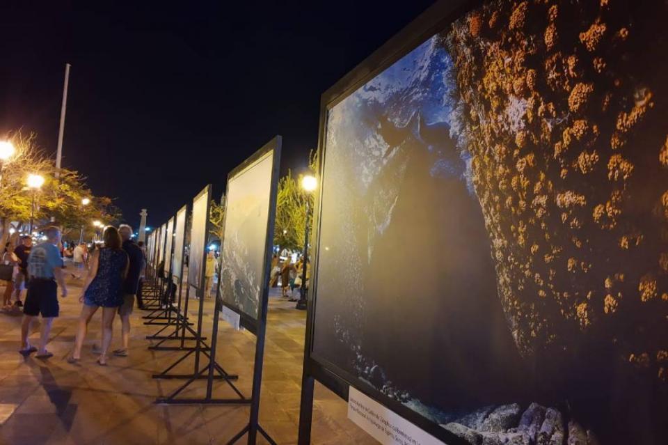 A través del lente de Alfredo Martínez presentan exposición fotográfica de La Paz