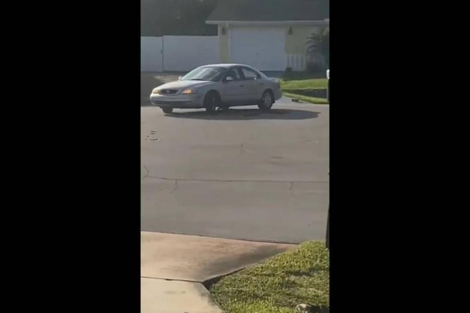 Captan a un perro solo dando vueltas en un auto en Florida