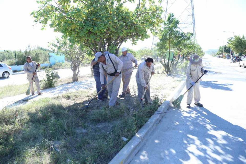 Se realizan intensas Jornadas de Limpieza en San José del Cabo