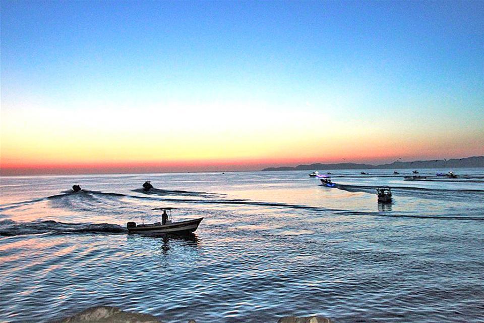 Instrumentarán Programa de Ordenamiento para Pesca Deportiva