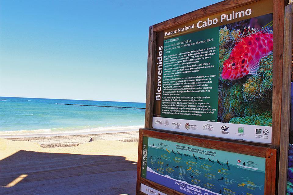 Impacto negativo genera en Cabo Pulmo anuncio de supuesto terreno en garantía por avión presidencial: pescador