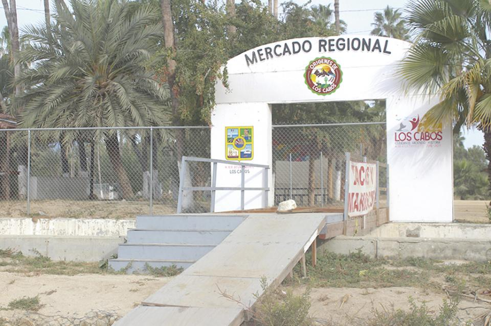"""""""Mercado Regional en proceso de remodelación"""" Fátima Miranda"""