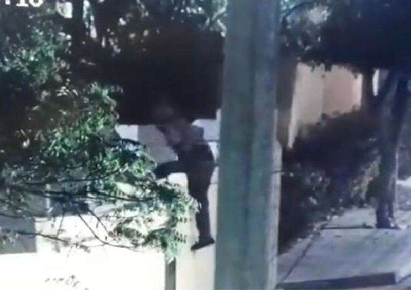 Cámara de video vigilancia capta a un hombre cuando se introducía a un domicilio en SJC
