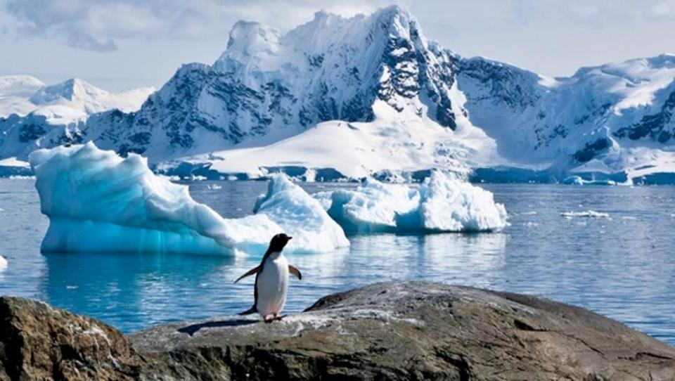 Aumenta a más de 20 grados la temperatura en la Antártida