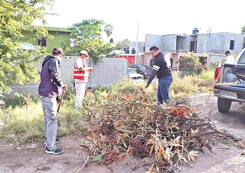 Realizan campañas de limpieza en colonias de CSL