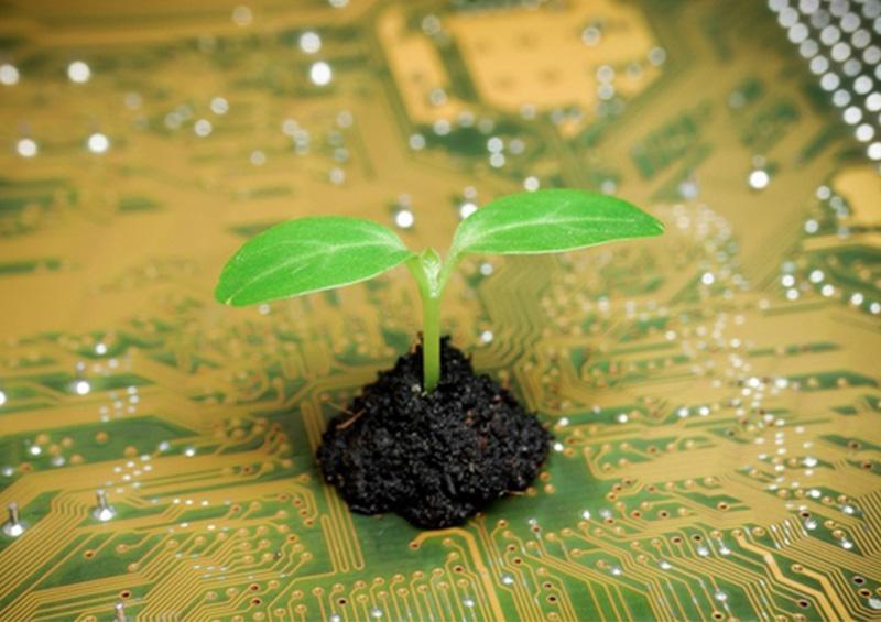 Inventan un dispositivo electrónico biodegradable en Japón