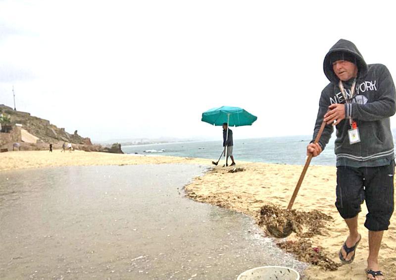 Realiza Zofemat Los Cabos limpieza de las  19 playas certificadas