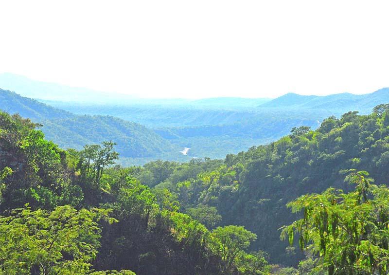 Va sector empresarial por la defensa del dorado y protección de la Sierra de la Laguna