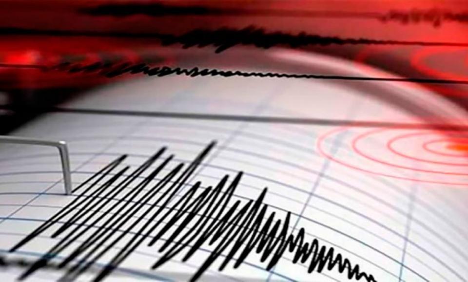 La pandemia de COVID-19 reduce la actividad sísmica mundial