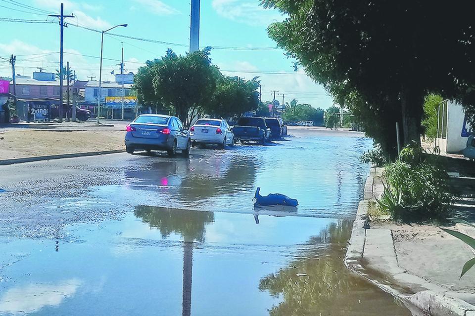 No hubo afectaciones por las lluvias del fin de semana